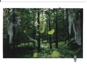 Polaroid 8 , 11 X 8 cm , nailpolish on polaroid, 2019